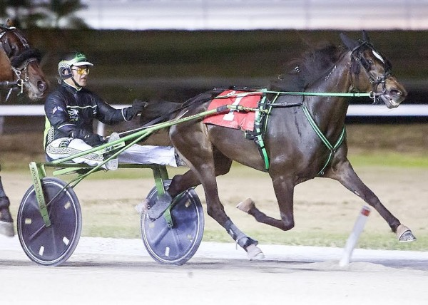 Sam Stathis Wins First Place Against All Odds With Celebrity Artemis At Pompano Park Raceway in Florida on Easter Sunday